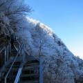 石鎚山、秋の霧氷(西条市の観光情報)